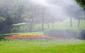 Get your irrigation system adjusted!