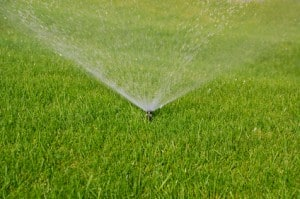 Get your sprinkler system checked!