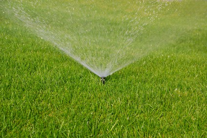 4 Common Problems with Sprinkler Controllers and How to Fix