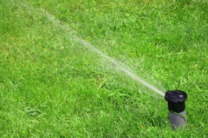 Irrigation system tips