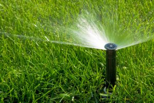 sprinkler with fine even spray onto a lush green lawn
