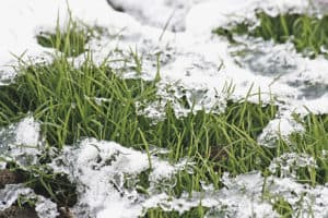 Winterizing your irrigation system