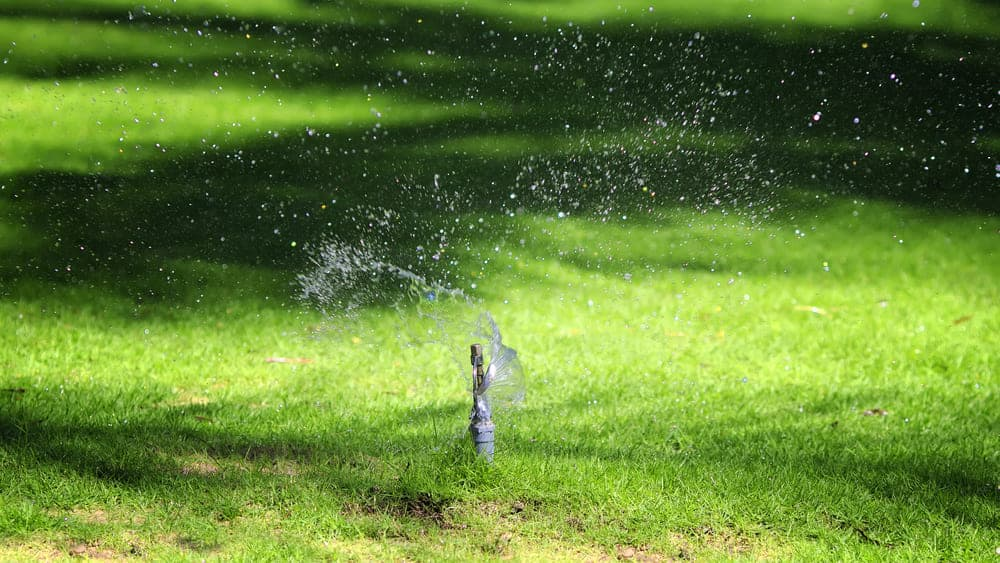 Troubleshooting Irrigation Electrical Problems - Sprinkler spraying grass