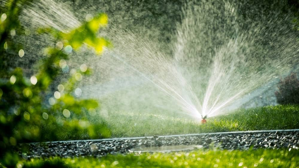 Water Sprinkler on Grass - 2021 Water Restrictions for Austin and Surrounding Areas